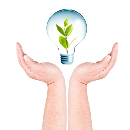 overuse: Hand holding the light bulb with green leaf inside