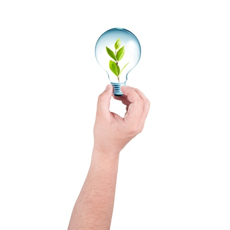 go inside: hand holding a light bulb with plant inside  Go Green concept Stock Photo