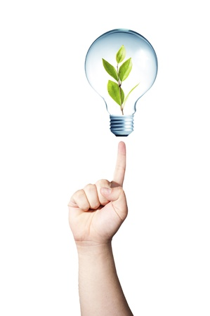 go inside: Hand pointing to light bulb with green plant inside  GO GREEN concept Stock Photo