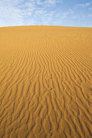Deserts Sand dune