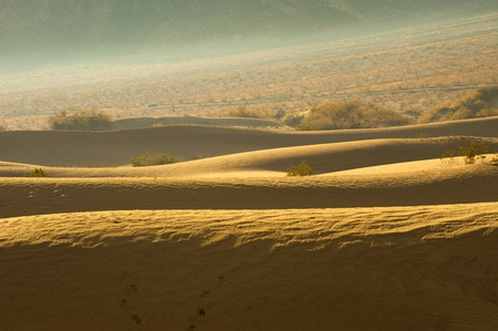 Desert sand dunes  Death Valley, USA photo