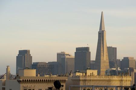 transamerica: San Francisco skyline
