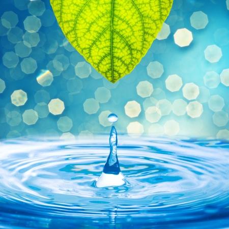 Kropla wody z zielonym liściem na pięknym tle bokeh światła słonecznego