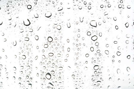 Water drop on white background Stock Photo - 13989695
