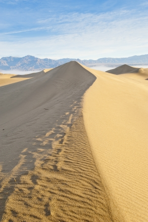 hummock: Sandy desert and clear sky