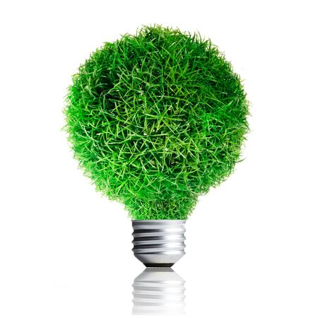 Green Grass growing on Light bulb  Concept for eco-friendly Stock Photo - 13733028