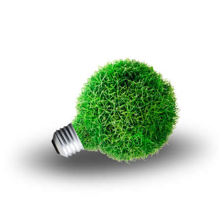 Green Grass growing on Light bulb  Concept for eco-friendly Stock Photo - 13733022