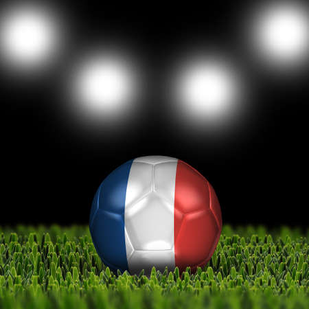 National Flag on the soccer ball on green grass with stadium lighting  Country France photo