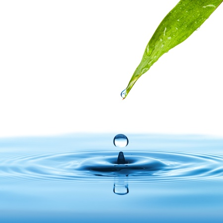 Water drop from green leaf on summer background Stock fotó