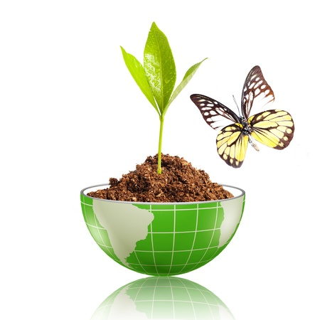 Groen blad, met water druppel, gloeit op de wereldbol met vuil en vlinder