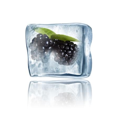 Blackberry frozen inside big ice cube