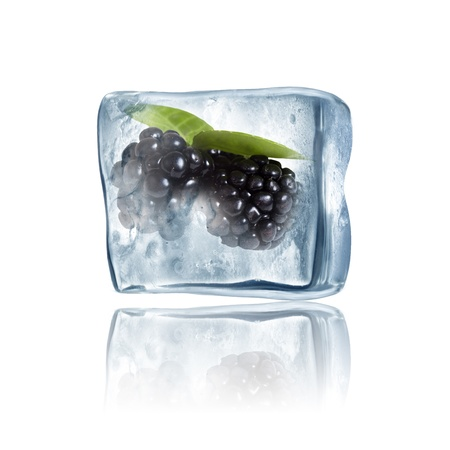 Blackberry frozen inside big ice cube