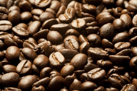large bean: Close up on brown coffee bean