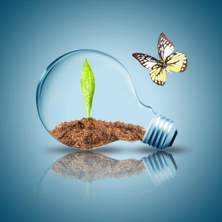 contaminacion ambiental: Bombilla con la hoja verde y en el interior del suelo en la planta