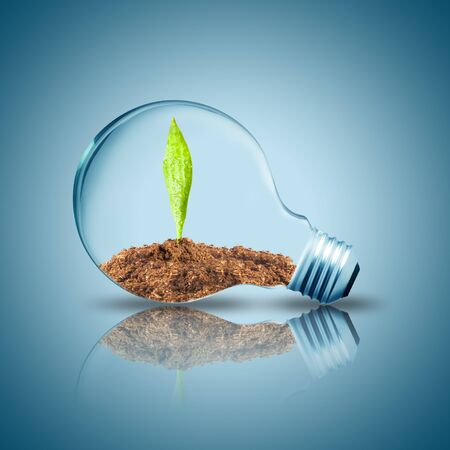 environment protection: Light bulb with plant inside with butterfly