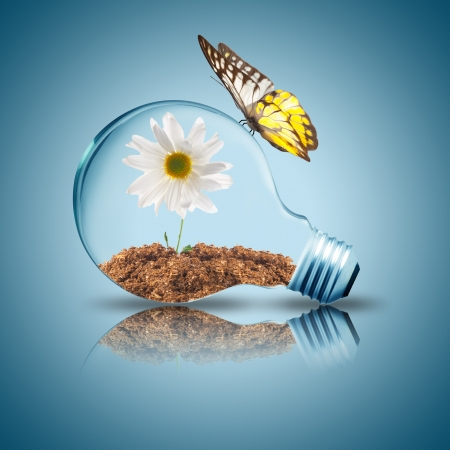 global innovation: Light bulb with white flower inside and butterfly