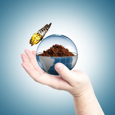 protection of land: Soil inside globe with glass cover and butterfly  Concept for environmental care  Stock Photo