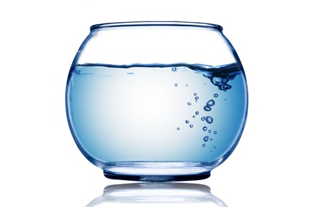 glass of bowl: Water wave and water bubble inside the fish bowl