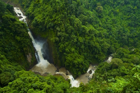 Deep forest waterfall Stock Photo - 15940032