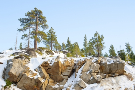 sierra snow: Snow on mountain at Lake Tahoe in Winter