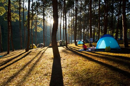 settled: Illuminated blue Camping tent from sunlight with silhouette trees in outdoor Stock Photo