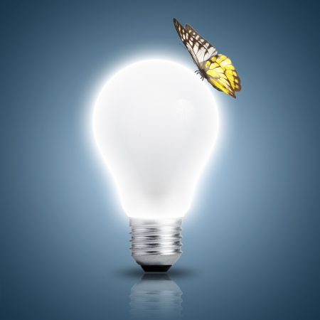 Light bulb turn on with butterfly on top photo
