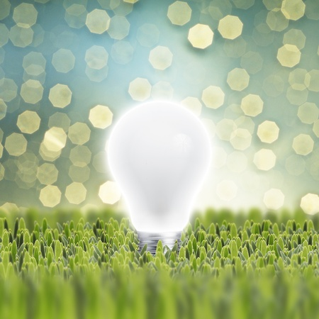 Turn on Light bulb on grass with light bokeh background Stock Photo - 16770086