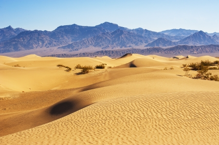 Desert Sand Dunes, Death Valley, California, USA Stock Photo - 17133706