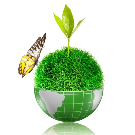 soil conservation: Butterfly flying to the ball of grass inside the globe with plant growing Stock Photo