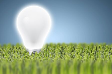 Light bulb on green grass with blue background  photo