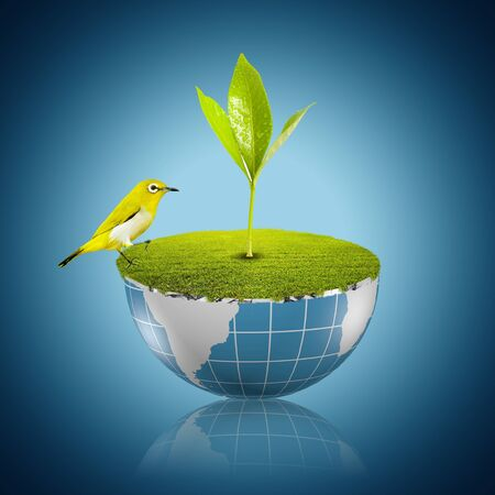 yellow bird on globe with green grass and plant growing Stock Photo - 17566148