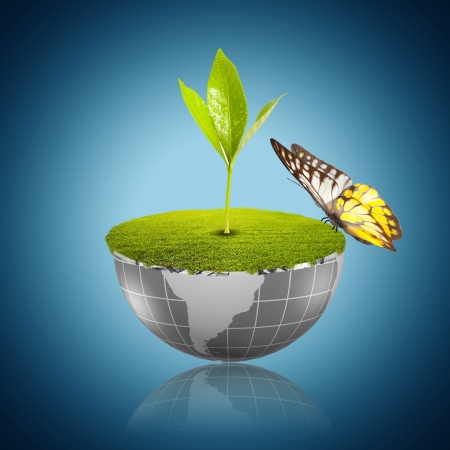 Butterfly on globe with green grass and plant growing Stock Photo - 17566138