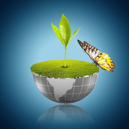 Butterfly on globe with grass growing Stock Photo - 18091490