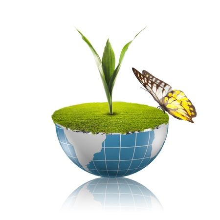 environmental protection: Butterfly on globe with grass growing