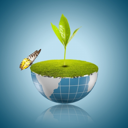 Butter fly on globe with grass growing Stock Photo - 18091487