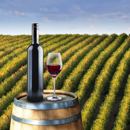 Bottle and glass of wine on wood barrel with vinyard background photo