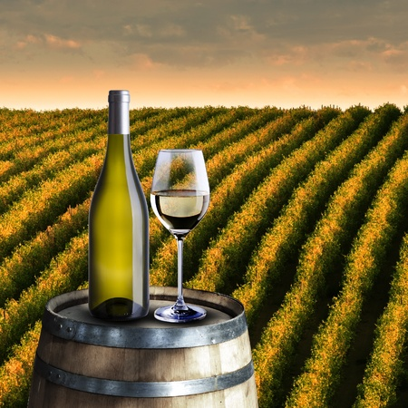 Bottle and glass of white wine on wood barrel with vineyard background photo