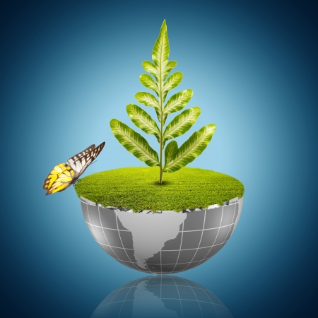 Butterfly on globe with grass growing Stock Photo - 19805024