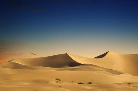 erg: Desert Sand Dunes