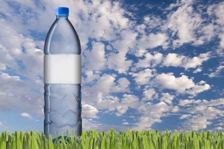 Water bottle on green grass Stock Photo - 21580061