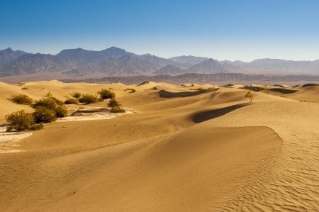 extreme heat: Desert Sand Dunes