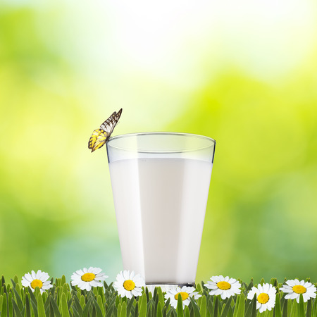 Glass of Milk on green grass with butterfly photo