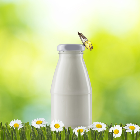 Milk Bottle on Green Grass with Butterfly photo