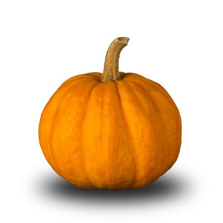 pumpkin: Pumpkin Stock Photo
