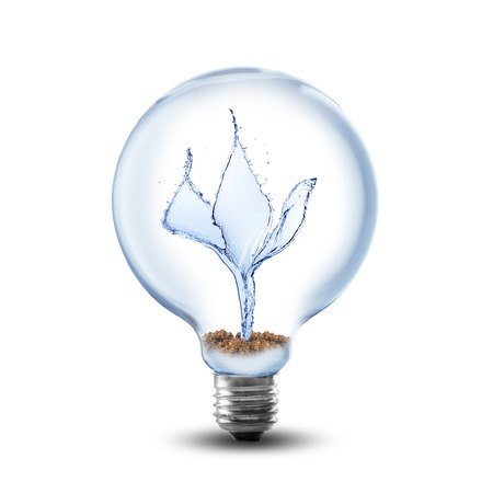 Light Bulb With Water Inside on white background photo