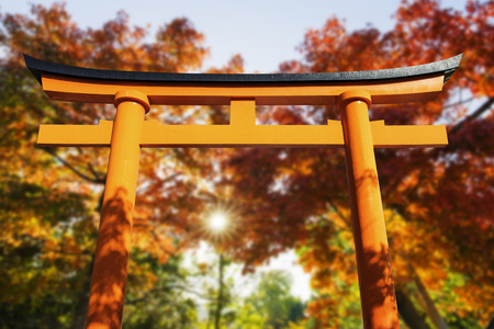 japan sky: Red Torii with Autumn Leaf in the Background