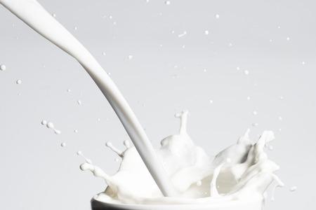牛乳のスプラッシュ 写真素材
