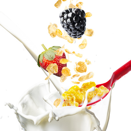 corn meal: Corn Flakes With Various Berries Falling into A Bowl of Milk Splash Stock Photo