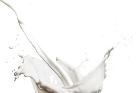 Milch Splash Standard-Bild - 43176278
