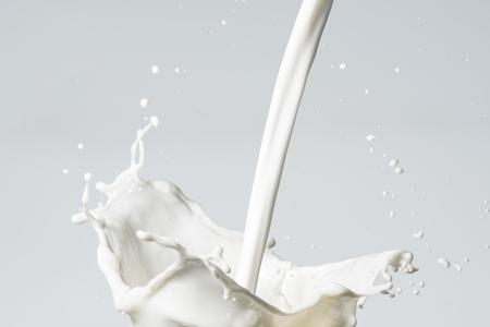 lacteos: Bienvenida de leche